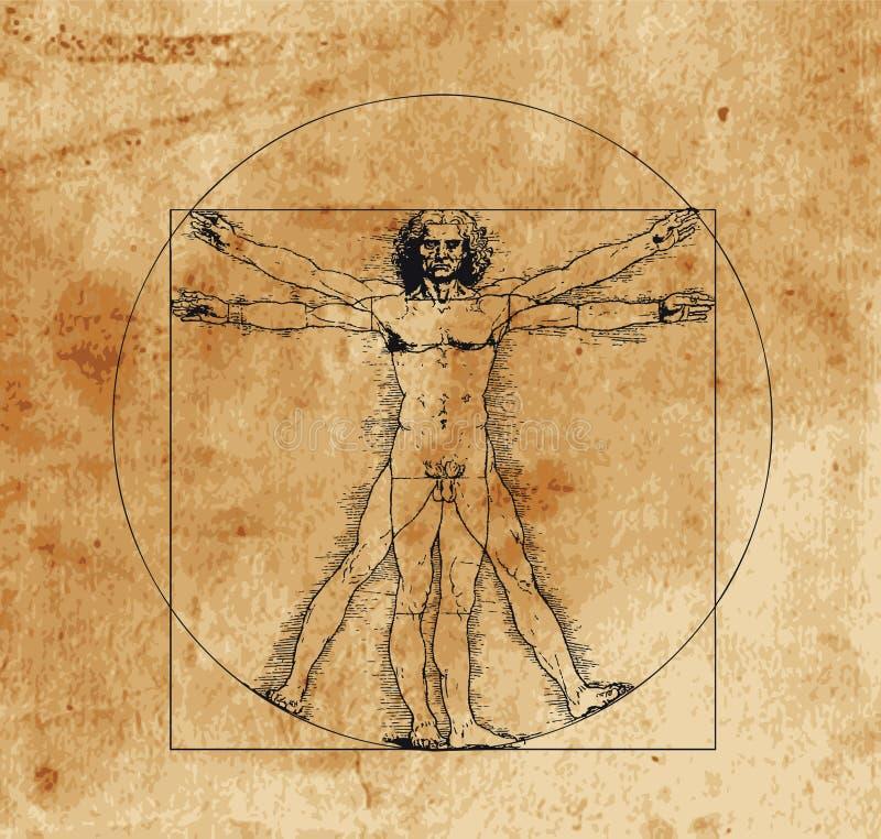 Uomo di Vitruvian illustrazione vettoriale
