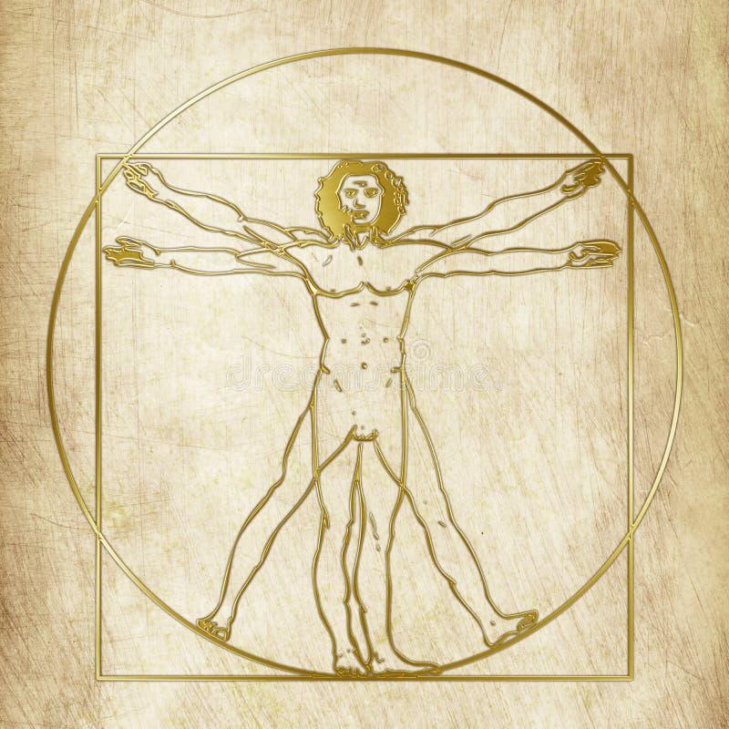Uomo di Vitruvian, Leonardo Da Vinci, elaborazione grafica illustrazione di stock