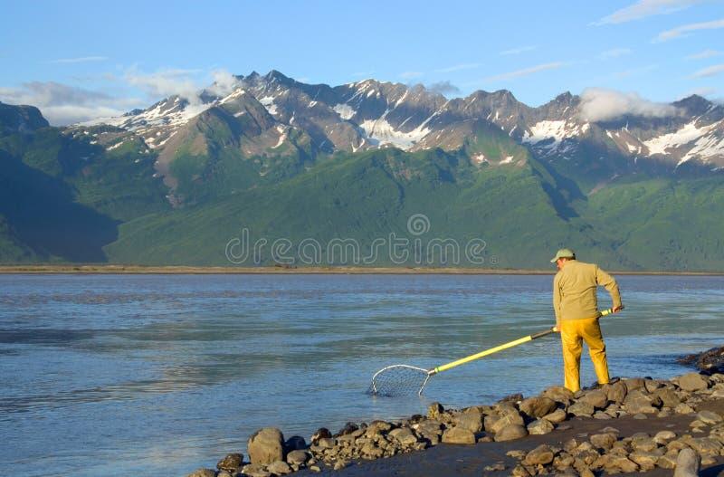Uomo Dipnetting per i salmoni fotografia stock libera da diritti