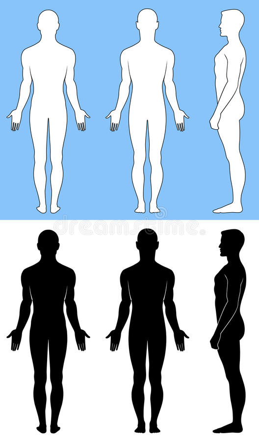 Uomo diritto nudo illustrazione vettoriale