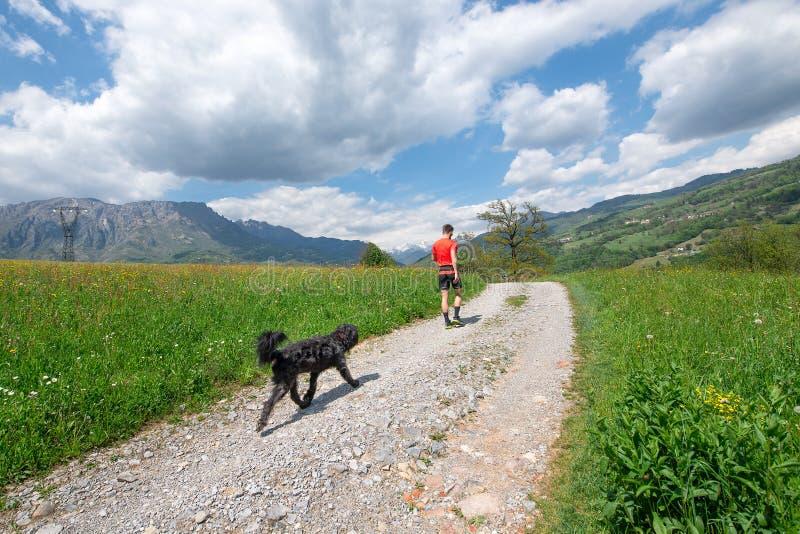 Uomo durante la passeggiata nelle montagne con il suo cane che lo segue fotografie stock libere da diritti
