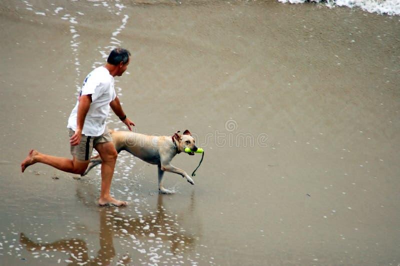 Uomo e cane sulla spiaggia immagine stock