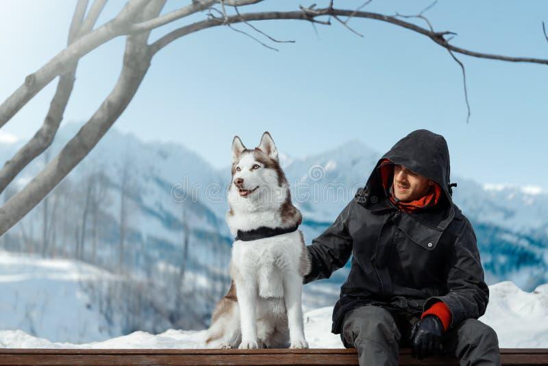 Uomo e cane sveglio del husky siberiano che si siedono sul banco altamente in montagne fotografie stock