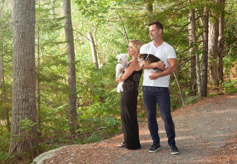 Uomo e donna con i cani che guardano foresta immagini stock