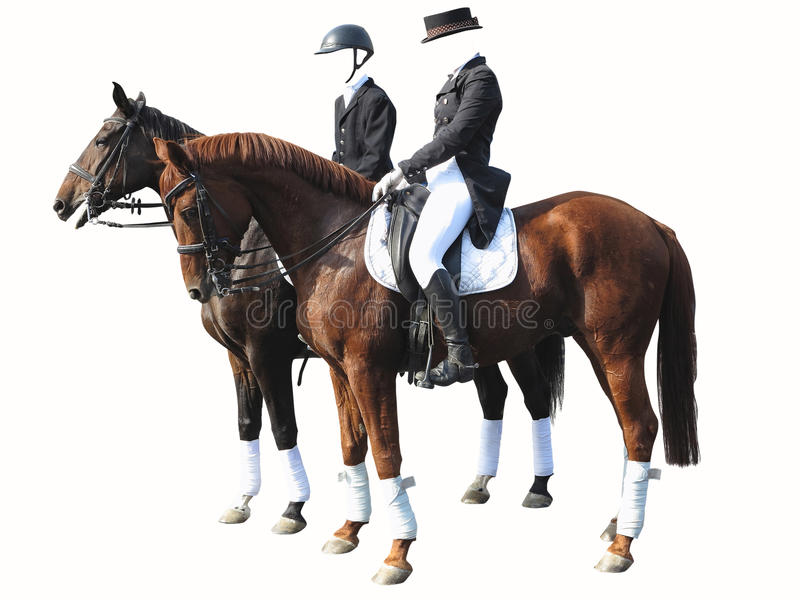 Uomo e donna del cavaliere di dressage con due cavalli isolati su bianco immagini stock