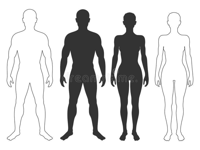 Uomo e siluette e contorni della donna illustrazione di stock