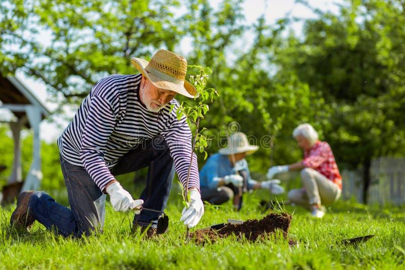 Uomo facendo uso dell'attrezzatura di giardinaggio mentre lavorando nel giardino immagini stock libere da diritti
