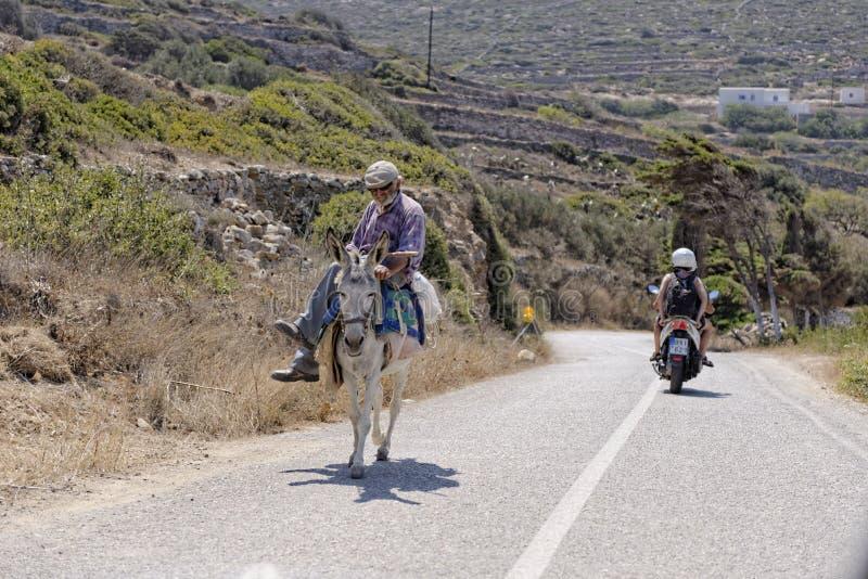 Uomo greco sul mulo fotografia stock libera da diritti