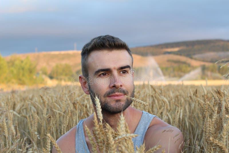 Uomo libero che gode del tramonto della natura Concetto di serenità e di libertà con il modello maschio naturale attraente Modell fotografia stock libera da diritti
