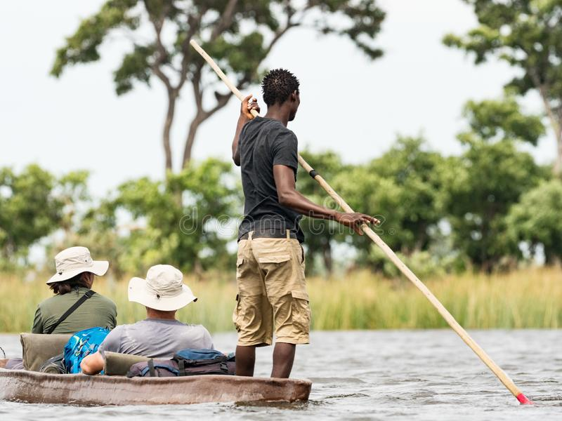 Uomo locale che lavora a Mokoro per consegnare i turisti ed i campeggiatori attraverso i fiumi del delta Okawango, Botswana fotografia stock