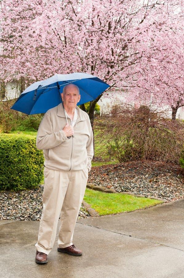 Uomo maturo con Ulmbrella in pioggia immagine stock libera da diritti