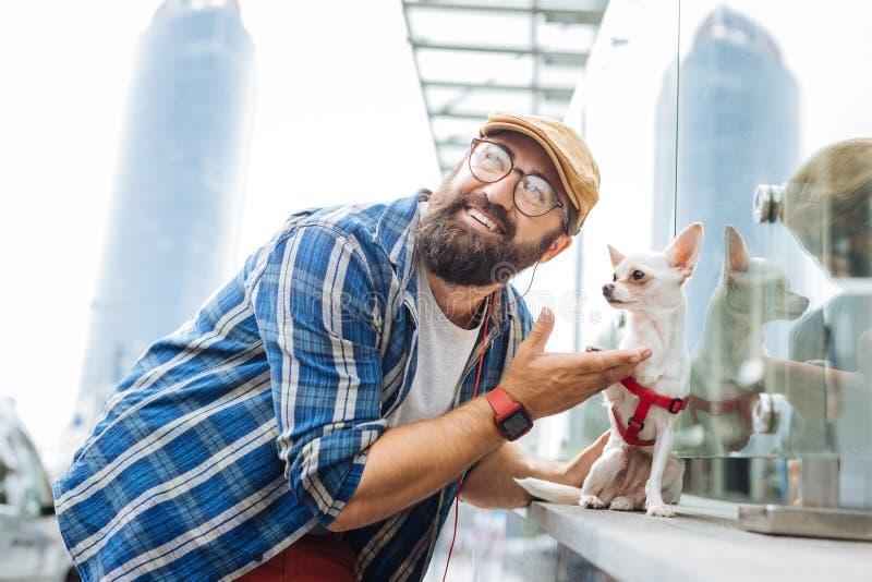 Uomo moderno che ascolta la musica facendo uso delle cuffie e che cammina con il cane fotografie stock libere da diritti