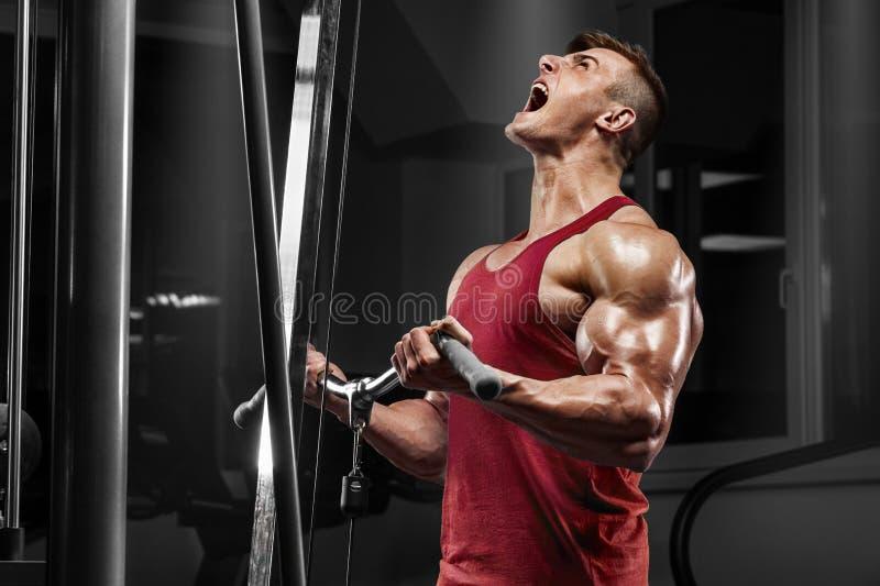 Uomo muscolare che risolve nella palestra che fa gli esercizi, forte maschio fotografia stock libera da diritti