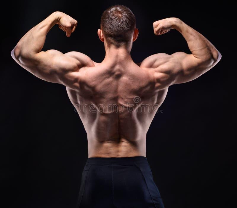 Uomo muscolare nella manifestazione dello studio il suo indietro immagine stock