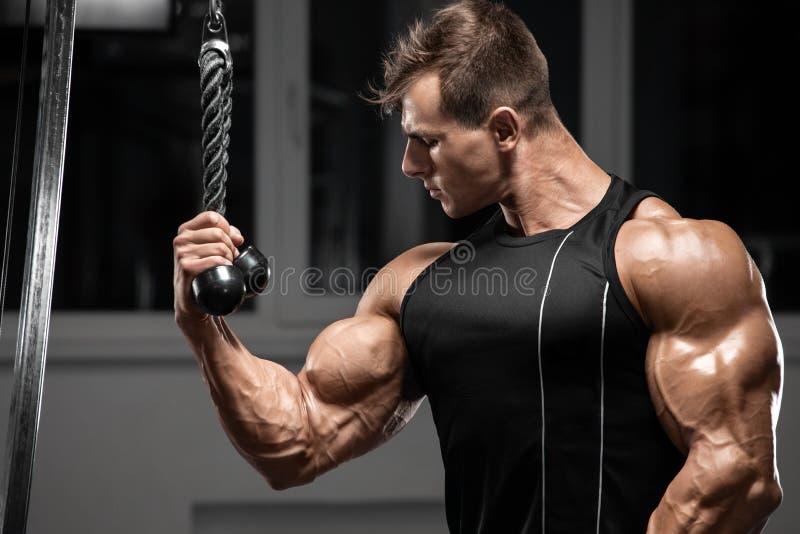 Uomo muscolare in palestra che fa esercizi per bicipiti, maschio, forte culturista che mostra bicipiti immagine stock