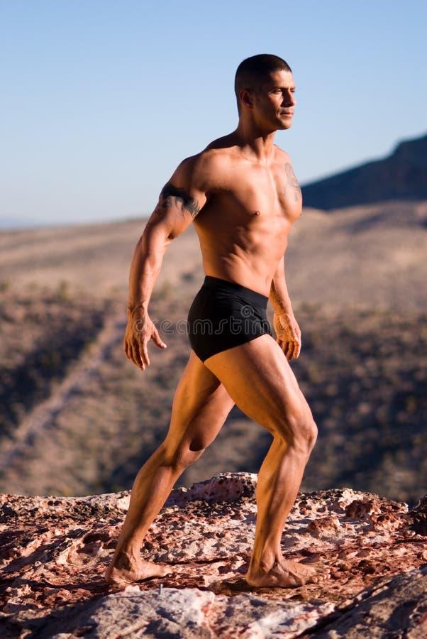 Uomo muscolare sulla roccia. immagini stock libere da diritti