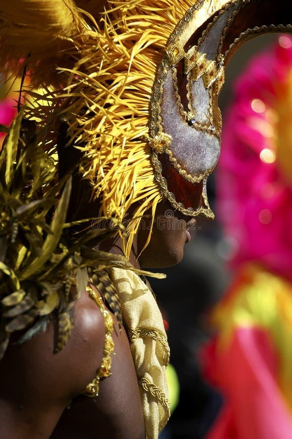 Download Uomo Nel Carnevale Londra Del Nottinghill Del Costume Immagine Stock - Immagine di evento, covering: 202287