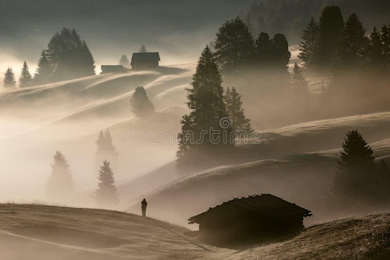 Uomo nella nebbia immagine stock
