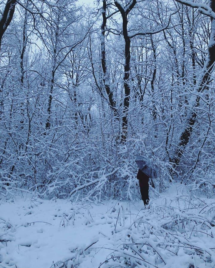 Uomo nella neve con l'ombrello immagine stock