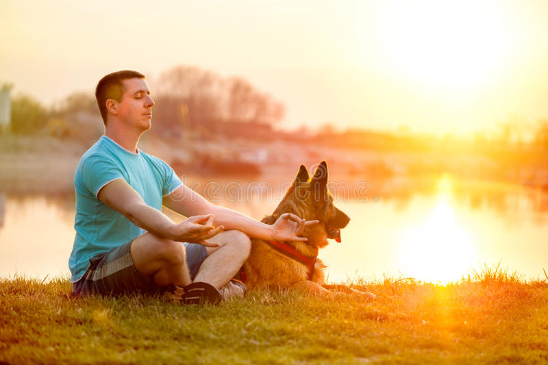 Uomo rilassato e cane che godono del tramonto o dell'alba di estate fotografie stock libere da diritti