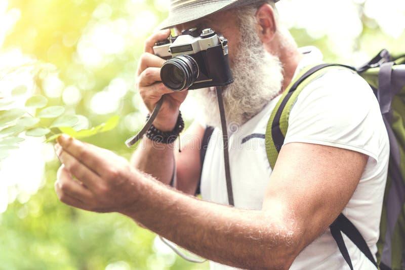 Uomo senior barbuto calmo che fotografa natura in foresta fotografie stock libere da diritti
