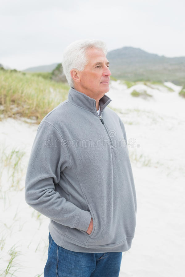 Uomo senior casuale contemplativo alla spiaggia fotografia stock libera da diritti