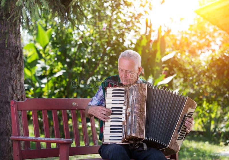 Uomo senior che gioca fisarmonica fotografia stock