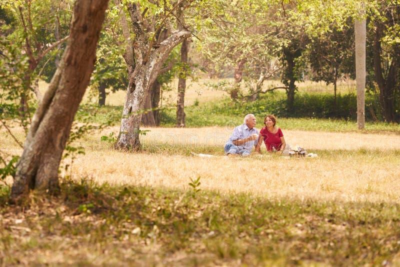 Uomo senior e donna delle coppie senior che fanno picnic immagine stock libera da diritti