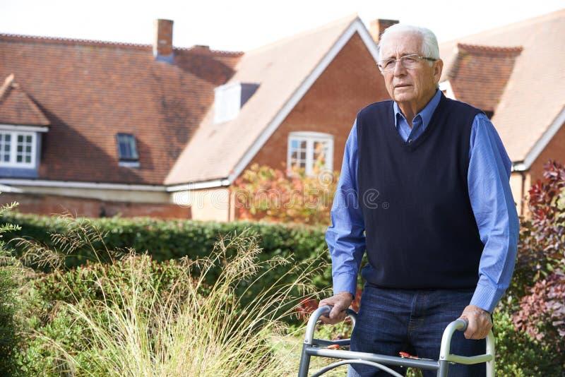 Uomo senior in giardino facendo uso della struttura di camminata fotografie stock libere da diritti