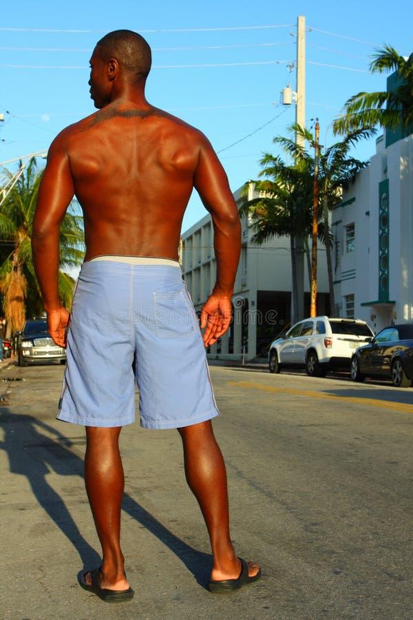 Uomo senza camicia fotografia stock libera da diritti
