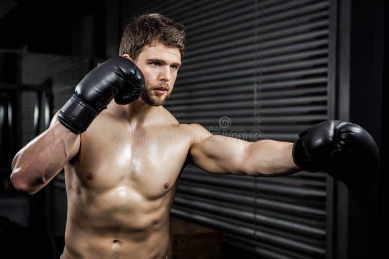 Uomo senza camicia con la formazione dei guanti del boxe fotografia stock libera da diritti