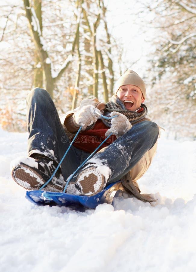 Uomo Sledging attraverso il terreno boscoso dello Snowy immagine stock libera da diritti