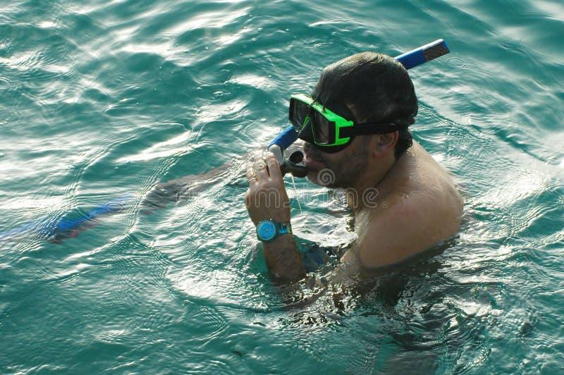 Download Uomo snorkeling3 fotografia stock. Immagine di goggles - 213616