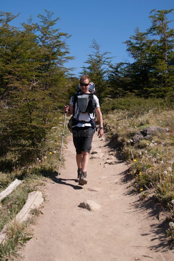 Uomo su una traccia Trekking immagini stock libere da diritti