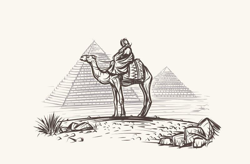 Uomo sul cammello in deserto vicino all'illustrazione delle piramidi Vettore