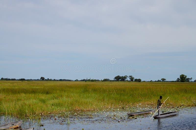 Uomo in un delta di Okavango - di Makoro - il Botswana immagini stock
