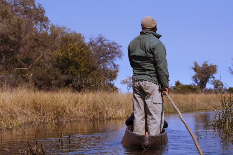 Uomo in una canoa nel delta di Okavango, Botswana di mokoro immagini stock