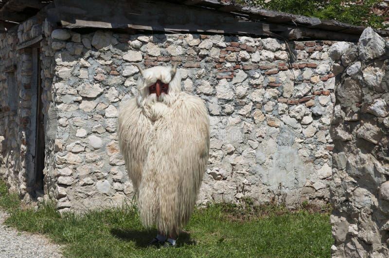 Uomo vestito come pecora fotografie stock libere da diritti