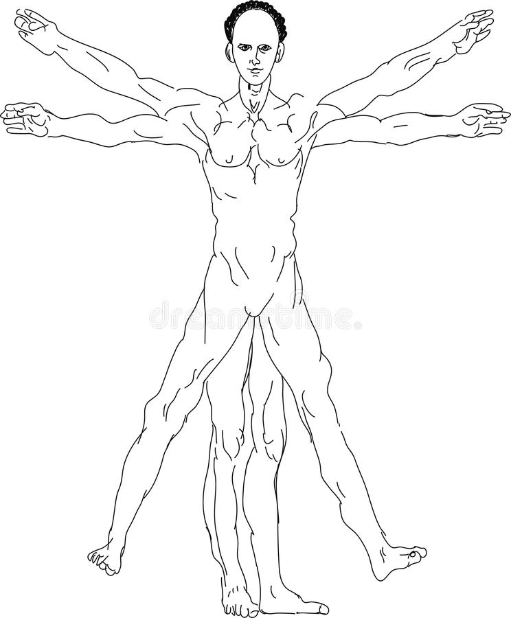 Uomo vitruvian del ` s di Leonardo da Vinci royalty illustrazione gratis