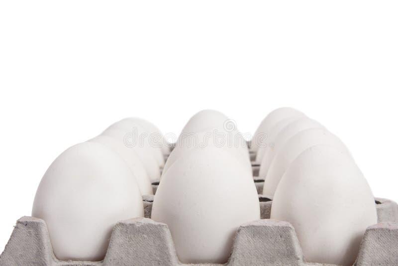 Uova bianche immagini stock libere da diritti
