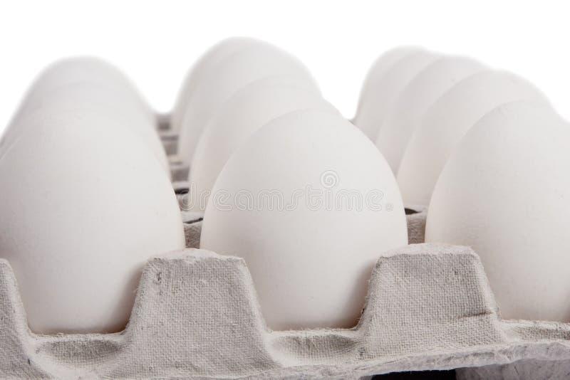 Uova bianche fotografie stock