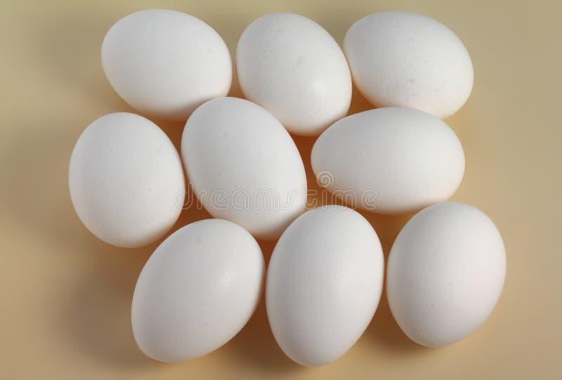 Uova bianche fotografia stock libera da diritti