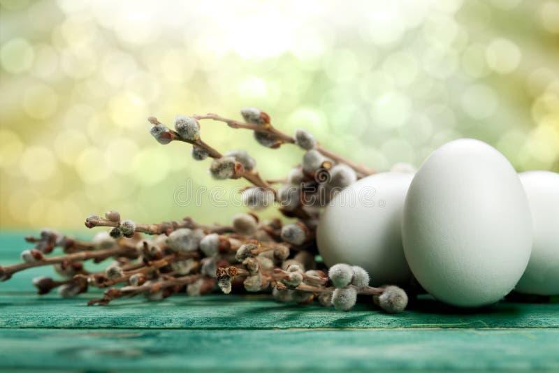Uova bianche e catkin fotografie stock