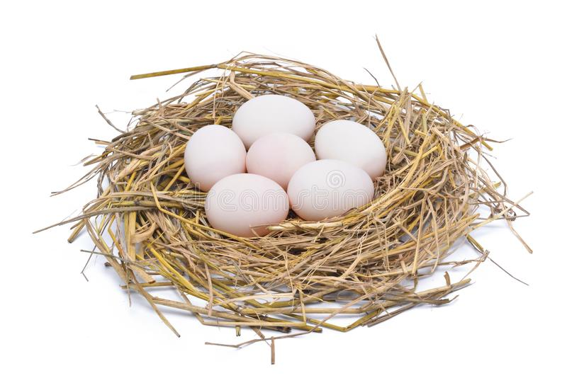 Uova bianche nel nido del fieno isolato su fondo bianco fotografie stock