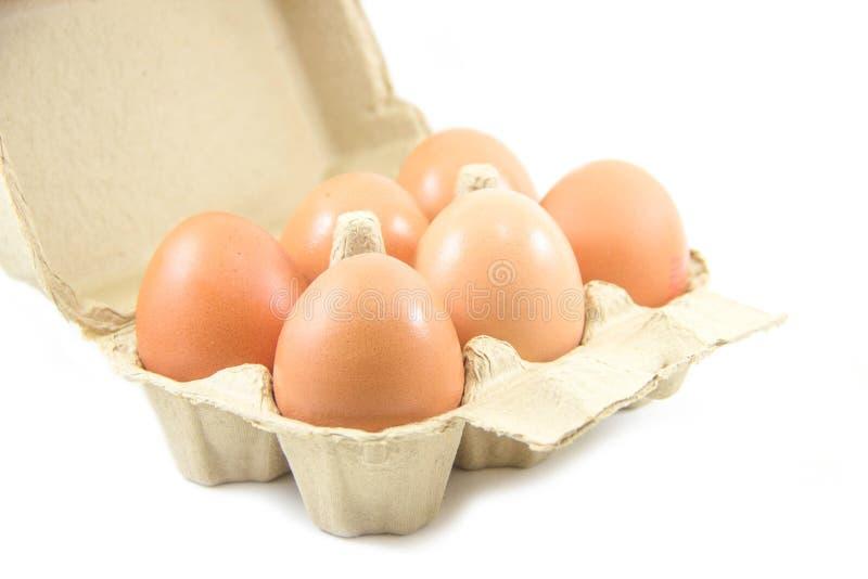 Download Uova In Cartone Di Carta Dell'uovo Su Fondo Bianco Immagine Stock - Immagine di podere, uova: 56887161