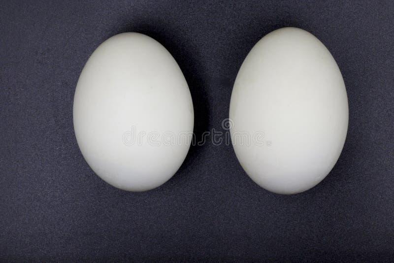 Uova conservate dell'anatra Isolato su priorit? bassa nera fotografia stock libera da diritti
