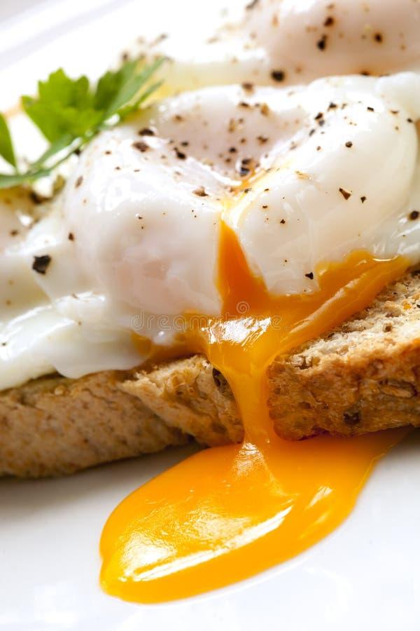 Uova cotte in camicia su pane tostato immagini stock libere da diritti