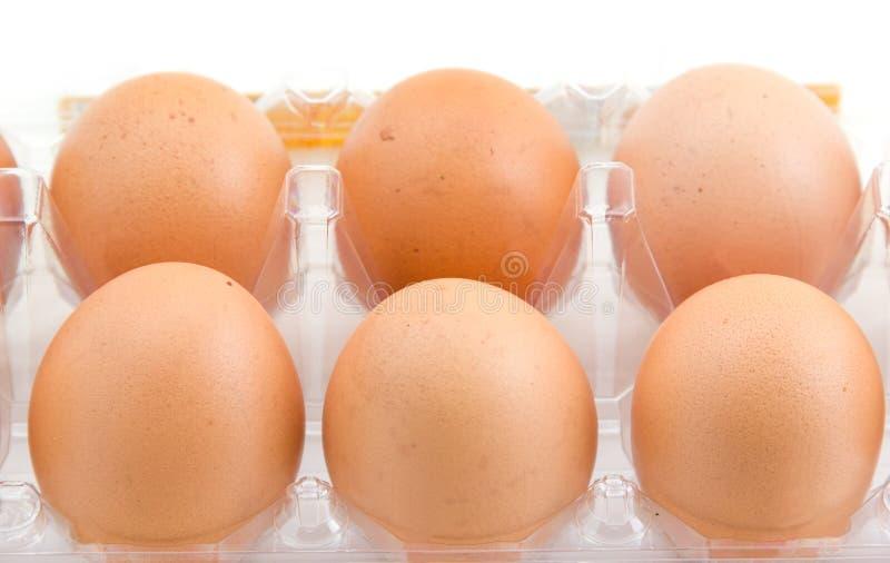Download Uova del pollo immagine stock. Immagine di nave, proteina - 30830351