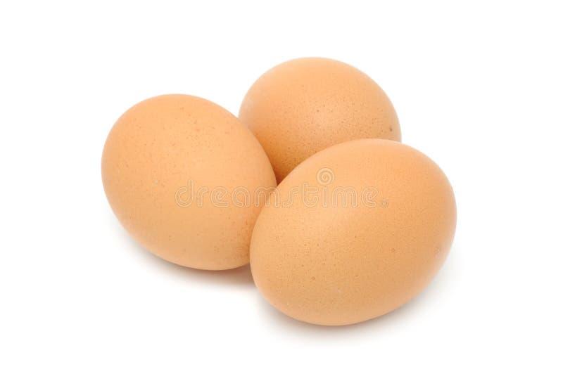 Uova del pollo del Brown immagine stock
