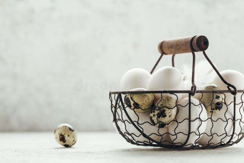 Uova del pollo e della quaglia in un canestro fotografia stock